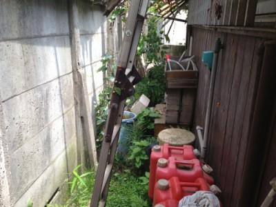 庭の片付け前