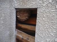 天井裏や壁の中