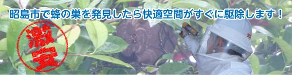 昭島市の蜂の巣駆除