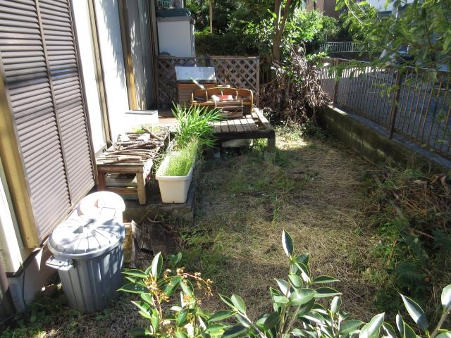 片付け前のお庭