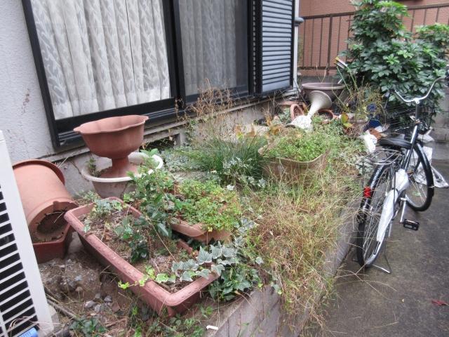 世田谷区のお庭
