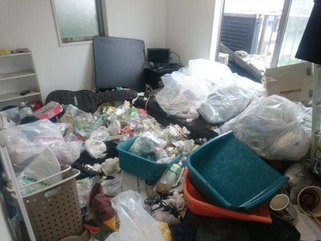 ゴミ屋敷 リビング