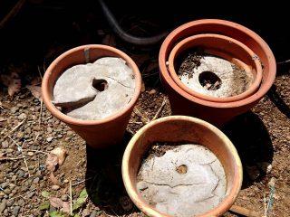 植木鉢にコンクリート