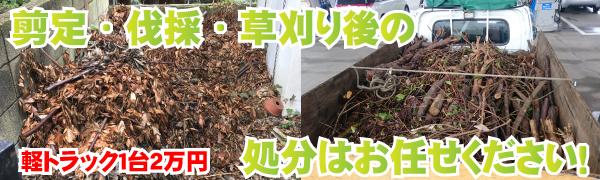 剪定枝・根・草・生木